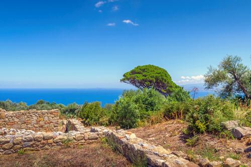 Messina Bild; Copyright bei Fotolia