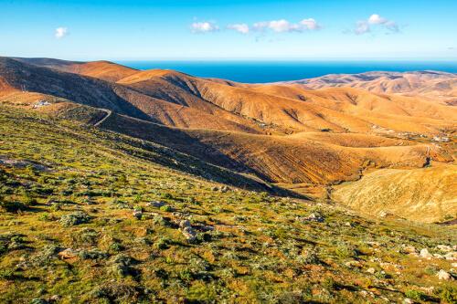 Puerto del Rosario / Fuerteventura Bild; Copyright bei Fotolia