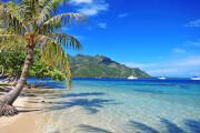 AIDA in Tahiti