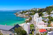AIDA in Wellington