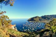 AIDA in Catalina Island
