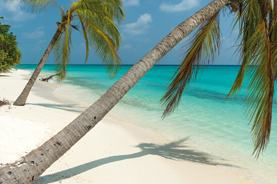 Reiseziel Karibik Mein Schiff