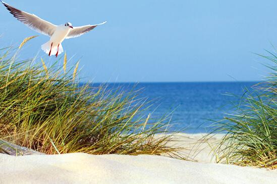Reiseziel Ostsee & Baltikum Mein Schiff