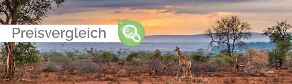 AIDA Preisvergleich Südafrika & Namibia 20.12.2021